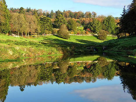 Autumn Reflections - Somerset by Susie Peek