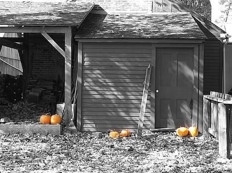 Autumn Rest by David Bader