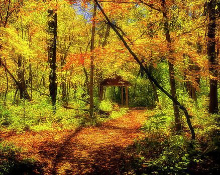 Autumn Retreat by Timothy Bonesho