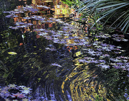 Autumn Ripples by Linda Geiger