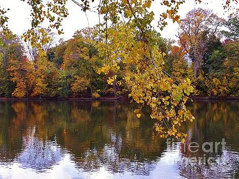 Autumn River Scene          October            Indiana by Rory Cubel