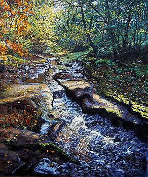 Autumn River by Stephen Warnes