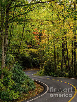 Autumn Road by David Lane