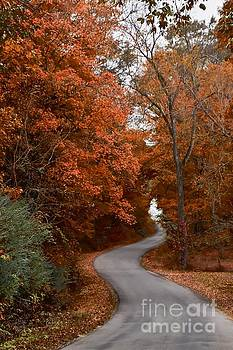 Autumn Road by Debbie Green