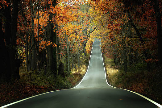 Autumn Road  by Victoria Winningham