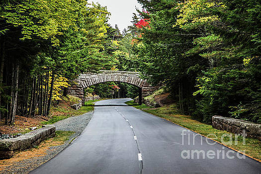 Autumn road with stone bridge and foliage colors by Miro Vrlik