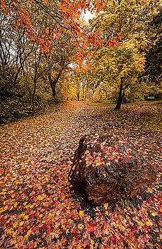 Autumn Rock by Gord Follett