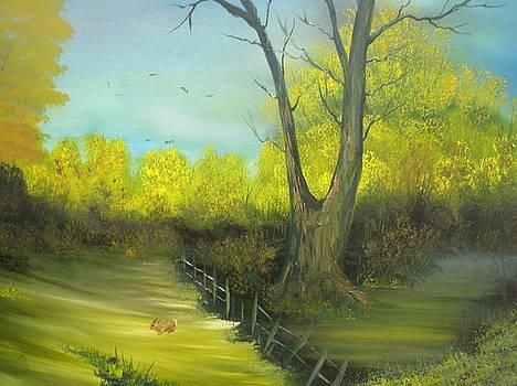Autumn by Ron Sargent