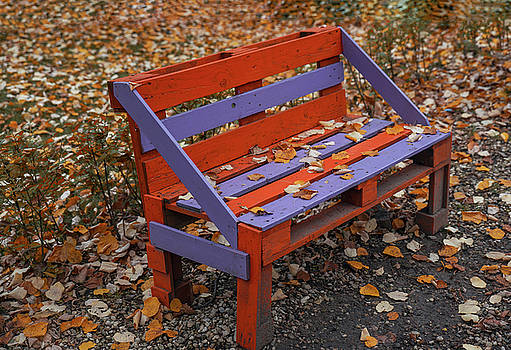 Autumn scene with fallen leafs and bench in a park by Julian Popov