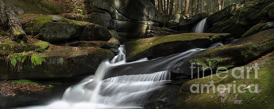 Autumn Secrets by Along The Trail