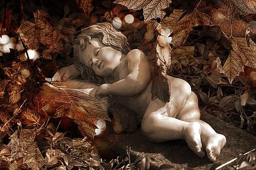 Autumn Sleep by Marc Huebner