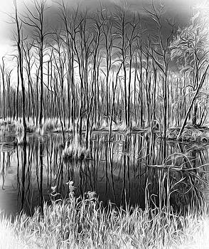 Autumn Slough - Paint bw by Steve Harrington