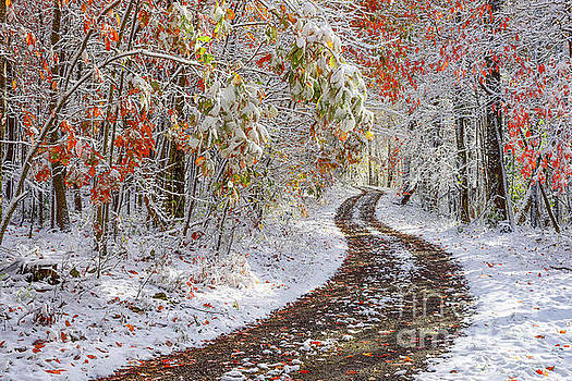 Autumn Snow Country Road by Thomas R Fletcher
