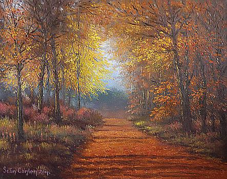 Autumn Solace in Emo by Sean Conlon