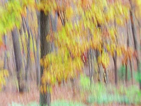 Autumn Splendor by Bernhart Hochleitner