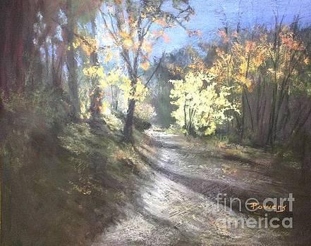 Autumn Splendor by Mary Lynne Powers