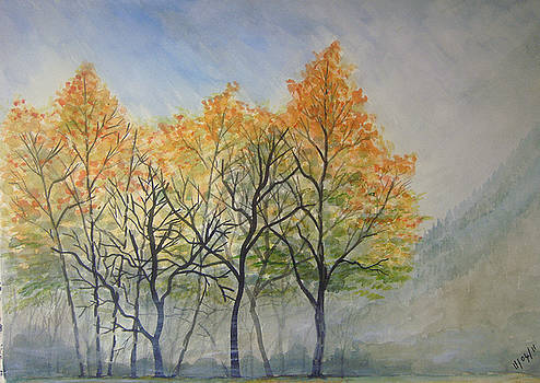 Autumn Splendour by John Scholey
