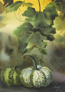 Alfred Ng - autumn squashes