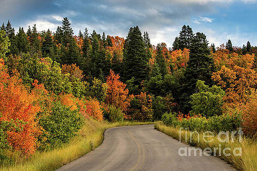 Autumn - Squaw Peak Road - Cascade Meadow by Gary Whitton