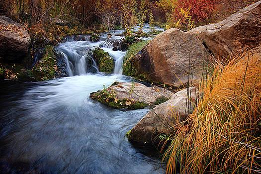 Autumn Stream by David Kocherhans