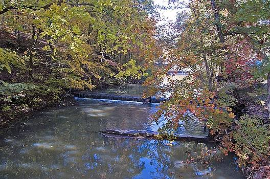 Autumn Stream by Scarlett Chambers