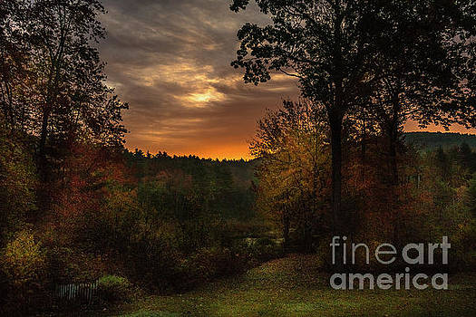 Autumn Sun by Mim White