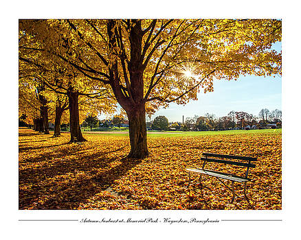 Autumn Sunburst at Memorial Park by Andy Smetzer