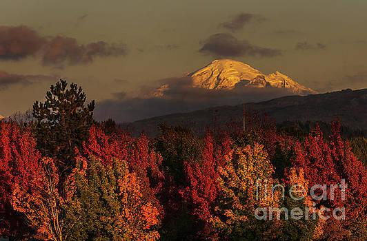 Paul Conrad - Autumn Sunset