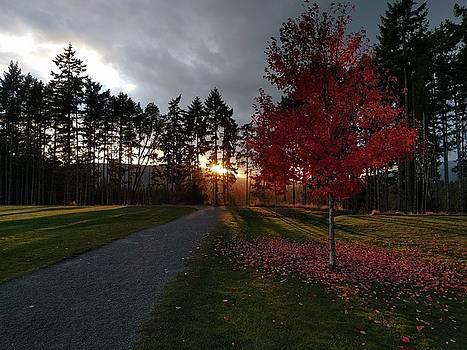 Autumn sunset, Shawnigan Lake by Jordan Barnes