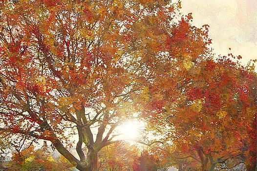 Steve Ohlsen - Autumn Sunset - West Valley City Utah