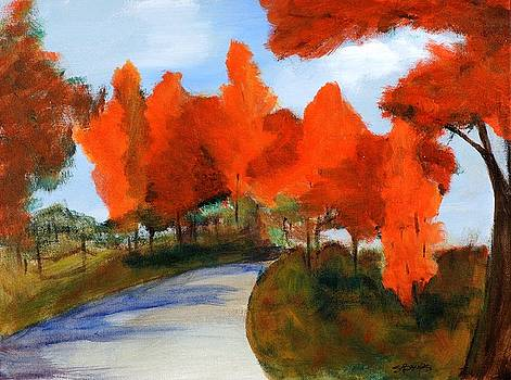 Autumn by Susan Boyes