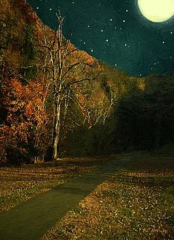 Autumn Tunnel by RC deWinter