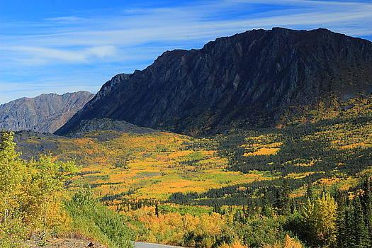 Marv Russell - Autumn in the Yukon