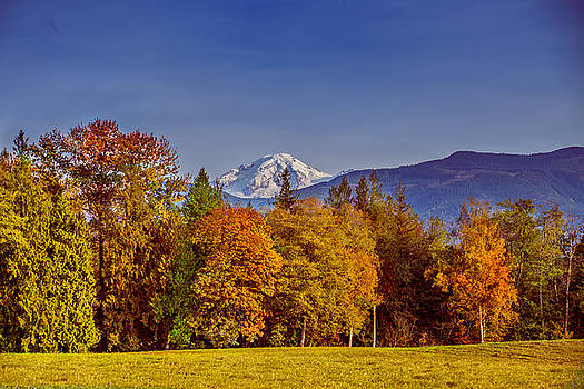Autumn View of Mt. Baker by Judy Wright Lott