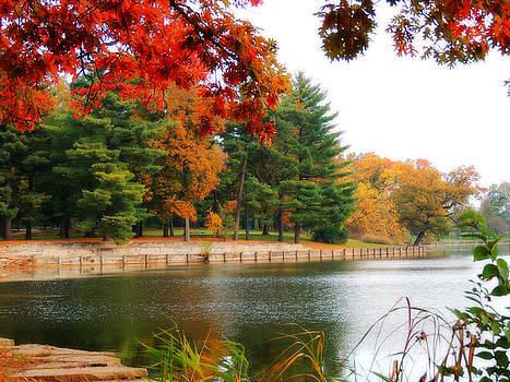 Autumn View by Teresa Schomig