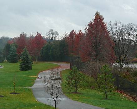 Autumn Walk by Barb Montanye Meseroll