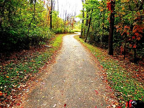 Autumn Walk by Deborah Kunesh