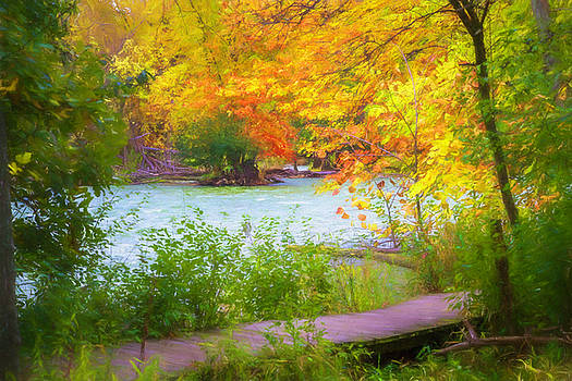 Autumn Walk by Joel Witmeyer