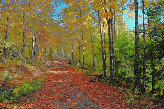 Autumn Walk by John Selmer Sr