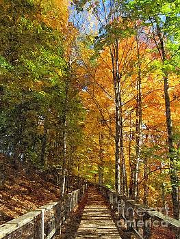 Autumn Walk by Sharon Patterson