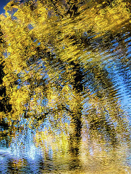 Autumn Water Reflections 3 by Susie Peek