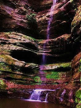 Autumn Waterfall I by Anna Villarreal Garbis