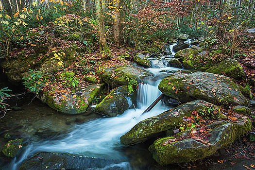 Autumn Waterfall In Smoky Mountains National Park by Carol Mellema