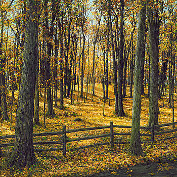 Doug Kreuger - Autumn Woodland