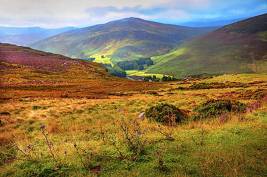 Jenny Rainbow - Autumnal Hills. Wicklow. Ireland