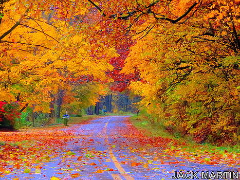 Autumns Bliss Of Michigan by Jack Martin