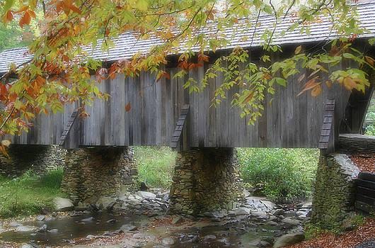 Karol Livote - Autumns Bridge