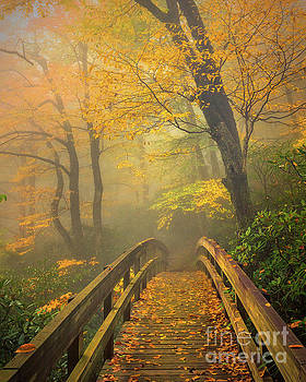 Autumn's Bridge To Heaven by Mike Koenig
