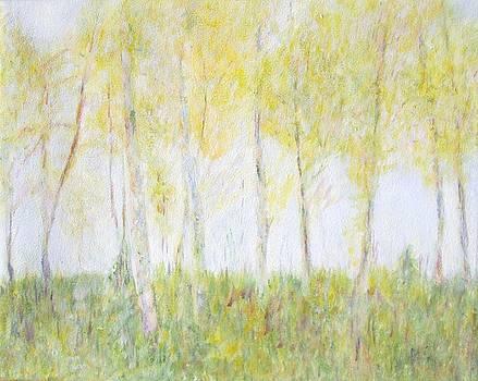 Autumn's Foliage by Glenda Crigger