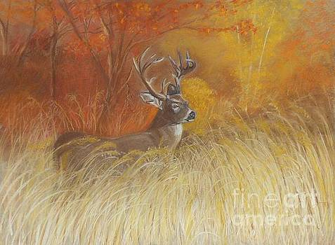 Autumn's Glory by Sue Carmicle